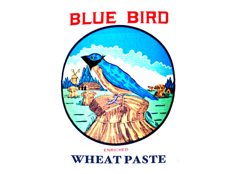 blue-bird-wheat-paste-cover