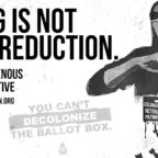 voting-is-not-harm-reduction